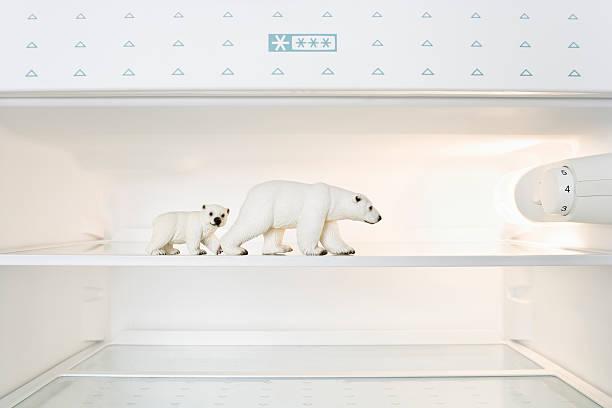 Toy Polar bears in freezer:スマホ壁紙(壁紙.com)