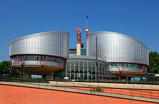 Human Rights「European Court of Human Rights」:スマホ壁紙(16)