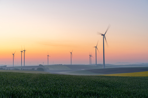 Wind Turbine「Young wheat in field and wind turbines at sunrise」:スマホ壁紙(5)