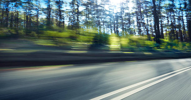 Mountain Highway Through the Trees:スマホ壁紙(壁紙.com)