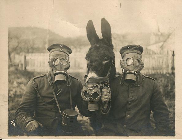 World War I「First World War」:写真・画像(18)[壁紙.com]