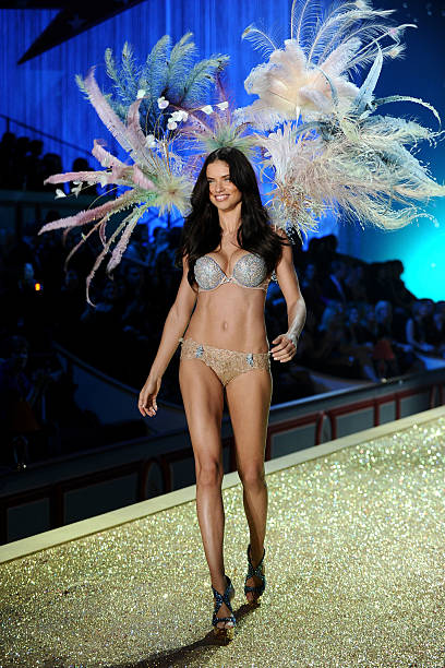 2010 Victoria's Secret Fashion Show - Runway:ニュース(壁紙.com)