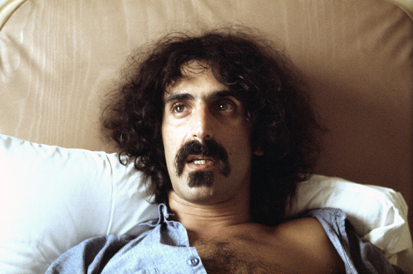 Fully Unbuttoned「Frank Zappa」:写真・画像(3)[壁紙.com]