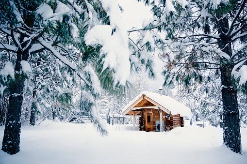St「Cabin in snowy rural forest」:スマホ壁紙(3)