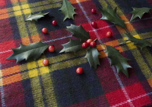 Tartan check「Holly leaves and berries」:スマホ壁紙(7)