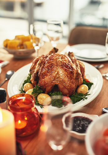 Turkey - Bird「Let's talk turkey」:スマホ壁紙(2)