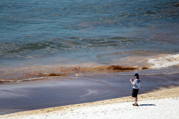 Water Pollution「Gulf Coast Battles Continued Spread Of Oil In Its Waters And Coastline」:写真・画像(10)[壁紙.com]