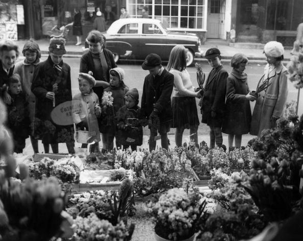 母の日「Flower Shop」:写真・画像(2)[壁紙.com]