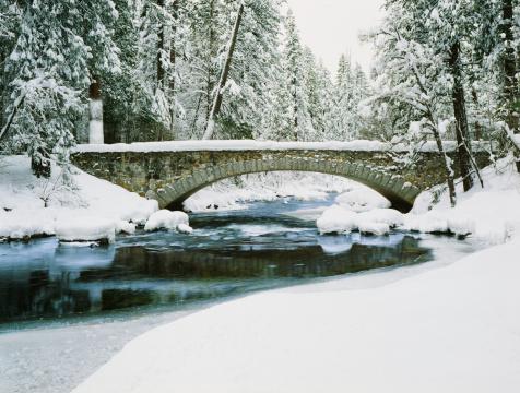 River「Fresh Winter snow laden pine trees along the Merced River」:スマホ壁紙(12)