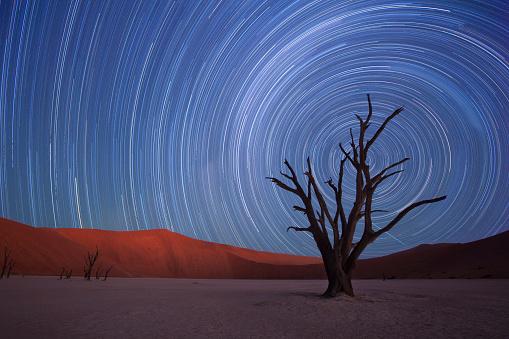 Multiple Exposure「Star trails,Dead Vlei, Sossusvlei,Namibia」:スマホ壁紙(9)