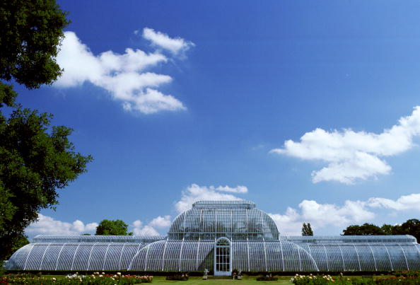 Kew Gardens「Palm House, Kew Gardens, UK」:写真・画像(3)[壁紙.com]
