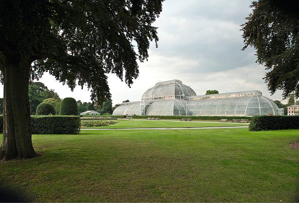 Greenhouse「Palm House At Kew Gardens」:写真・画像(1)[壁紙.com]