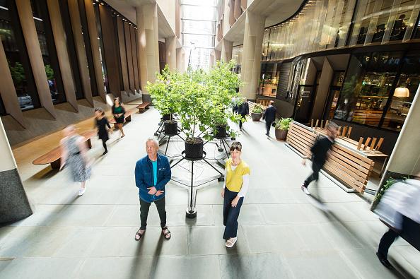 "Jeff Spicer「""Beuys' Acorns"", A New Installation By Ackroyd & Harvey At Bloomberg Arcade」:写真・画像(8)[壁紙.com]"