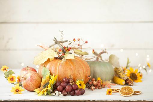 Branch - Plant Part「Autumn Pumpkin Background on Wood」:スマホ壁紙(11)