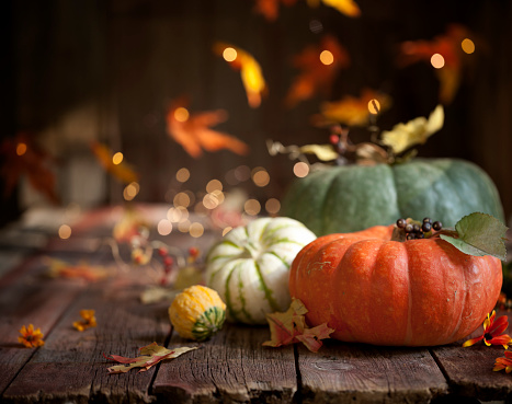 Maple Leaf「Autumn Pumpkin Background on Wood」:スマホ壁紙(19)