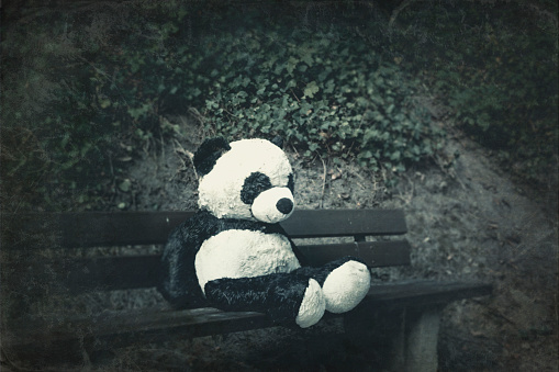 パンダ「Panda soft toy on a bench」:スマホ壁紙(0)