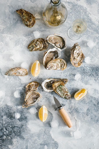 Gray Background「Raw oysters with lemon and champagne」:スマホ壁紙(16)