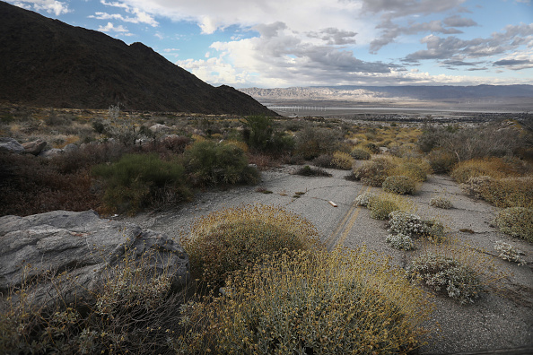 Greenhouse「California State Climate Report Shows Rising Average Temperatures In State's Coachella Valley」:写真・画像(17)[壁紙.com]