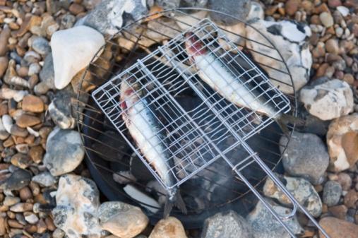 Hove「Roasting fish outdoors」:スマホ壁紙(19)