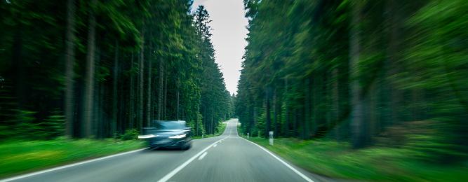 Approaching「Driving through a forest at high speed」:スマホ壁紙(13)
