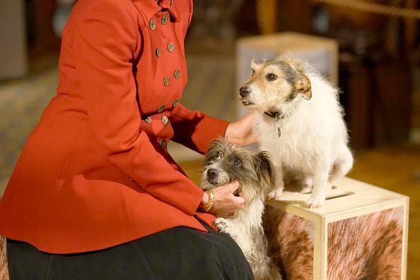 動物「Duke and Duchess of Devonshire Present Chatsworth 2019 Sculpture Exhibition」:写真・画像(17)[壁紙.com]