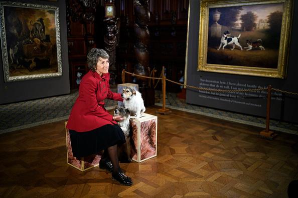 動物「Duke and Duchess of Devonshire Present Chatsworth 2019 Sculpture Exhibition」:写真・画像(16)[壁紙.com]