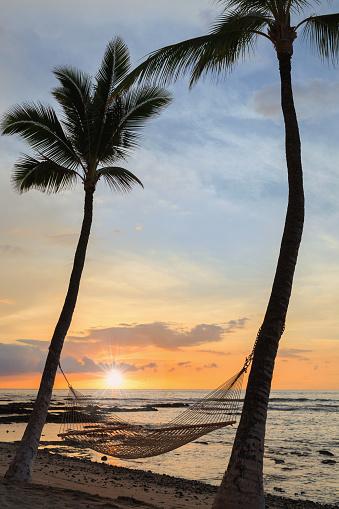 Hammock「Sunset and hammock in Hawaii」:スマホ壁紙(3)