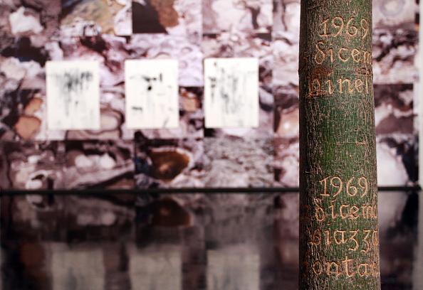 Macrophotography「The 4th Rome Film Festival -Cesare Zavattini Opening Exhibition」:写真・画像(2)[壁紙.com]