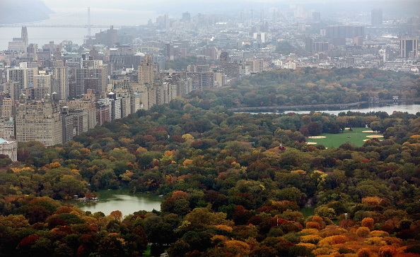 マンハッタン セントラルパーク「Central Park Receives 100 Million Dollar Donation From Hedge Fund Manager John Paulson」:写真・画像(0)[壁紙.com]