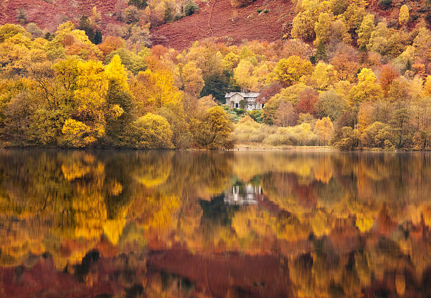 Still lakeside reflections at Grasmere in the Lake District, Cumbria, England, UK:スマホ壁紙(壁紙.com)