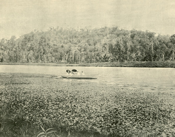 Physical Geography「On The Enoggera Lake」:写真・画像(15)[壁紙.com]