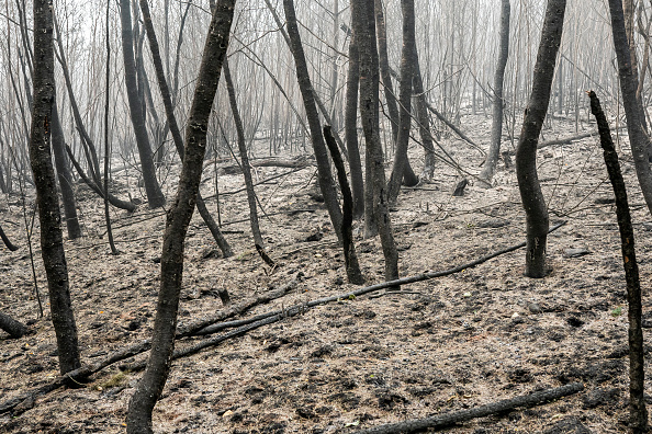 Burns - Oregon「Wildfires In Oregon Force Mass Evacuations And Threaten Hundreds Of Structures」:写真・画像(19)[壁紙.com]