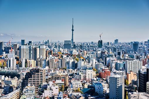 Japan「スカイラインの東京,日本 」:スマホ壁紙(16)