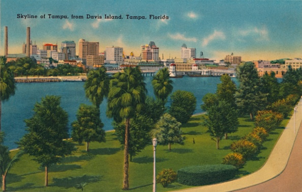 Tampa「Skyline Of Tampa」:写真・画像(15)[壁紙.com]