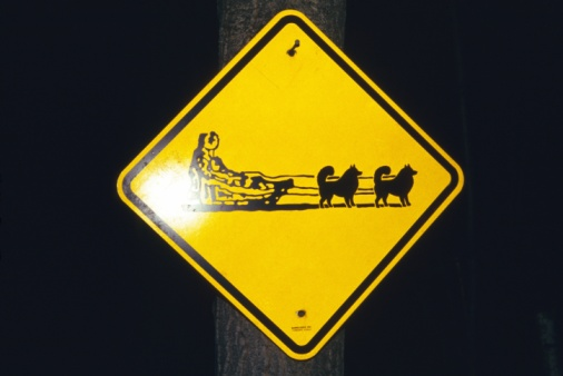 Dogsledding「Caution of a Dog Sled Sign, Front View」:スマホ壁紙(1)