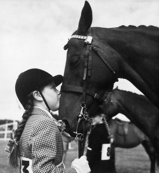 Horse「A Girl's Best Friend」:写真・画像(16)[壁紙.com]