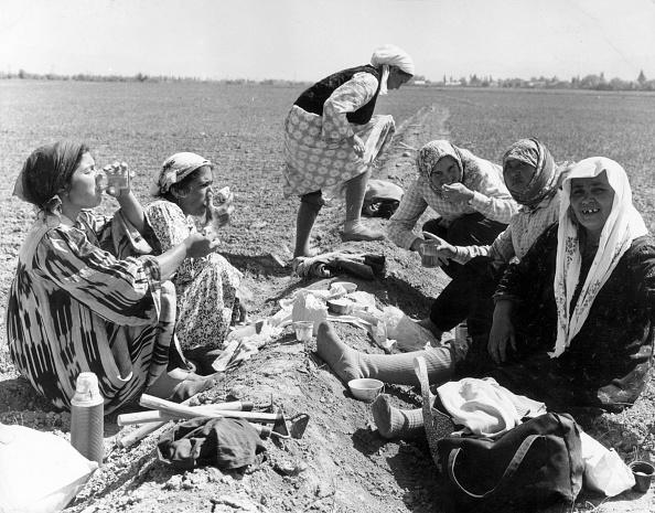 Farm「Uzbek Lunch Break」:写真・画像(9)[壁紙.com]