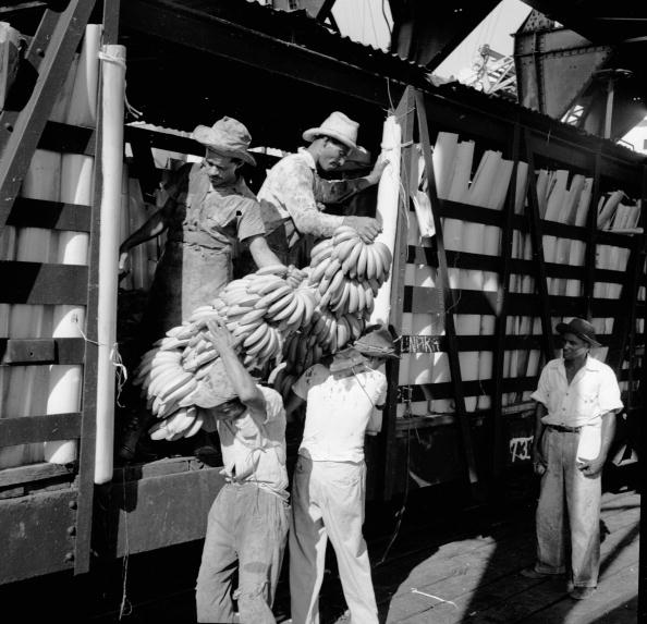 Costa Rica「Loading Bananas」:写真・画像(1)[壁紙.com]