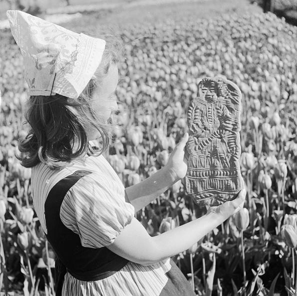 チューリップ「Easter Bread」:写真・画像(18)[壁紙.com]