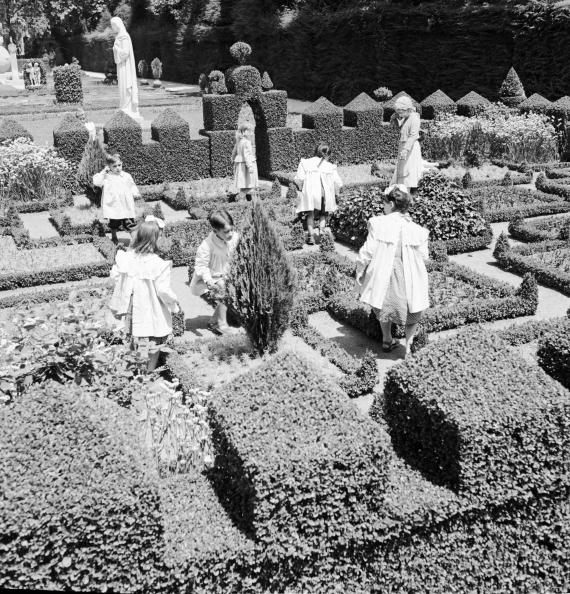 Ornamental Garden「Topiary Garden」:写真・画像(5)[壁紙.com]