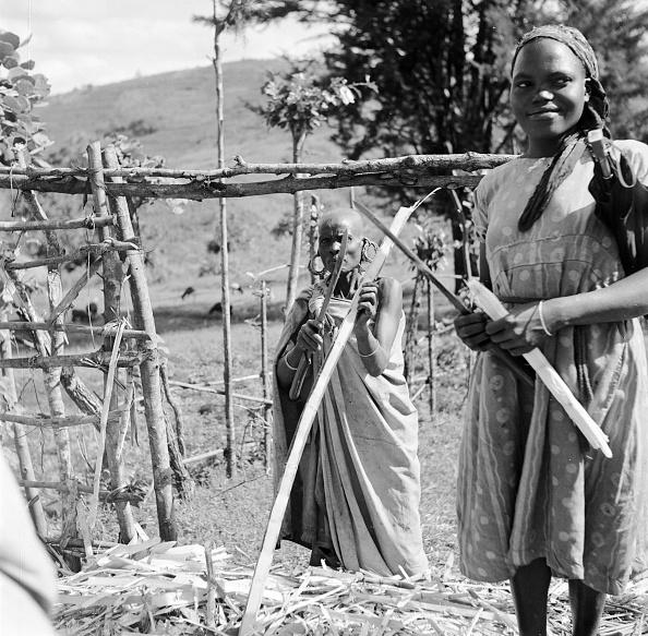 Nairobi「Sugar Harvest」:写真・画像(8)[壁紙.com]