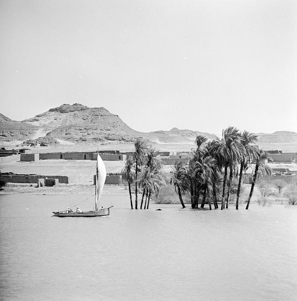 20th Century「High Water On Nile」:写真・画像(1)[壁紙.com]