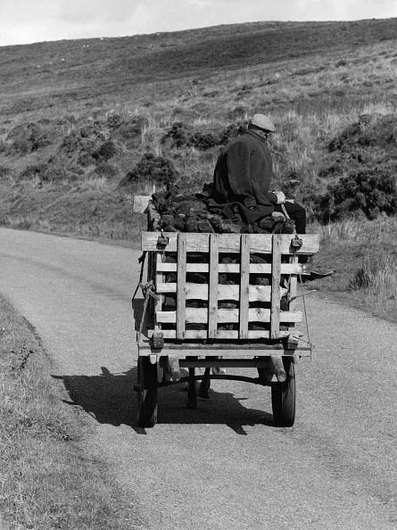Peat「Cart Of Peat」:写真・画像(10)[壁紙.com]