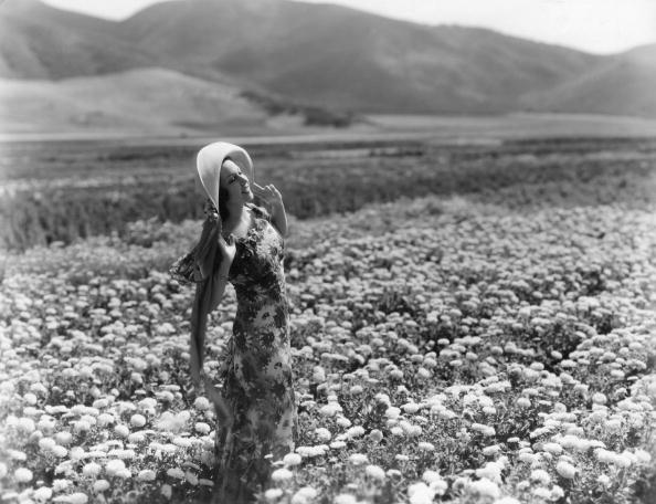 Ethel Merman「Merman In Field」:写真・画像(6)[壁紙.com]