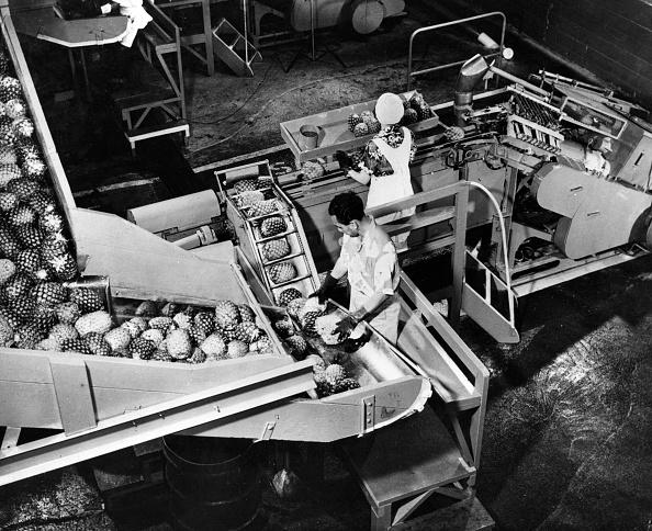 Machinery「Fruit Factory」:写真・画像(13)[壁紙.com]