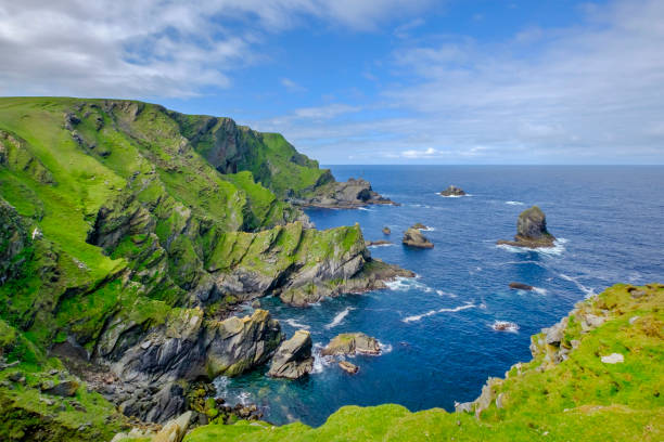 Hermaness National Nature Reserve, a dramatic cliff-top setting and a refuge of thousands of seabirds; it is the Britain's most northerly point, located on the island of Unst, Shetland Islands, Scotland.:スマホ壁紙(壁紙.com)