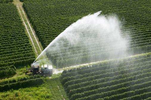 Spraying「USA, Florida, Homestead, crops, aerial view」:スマホ壁紙(2)