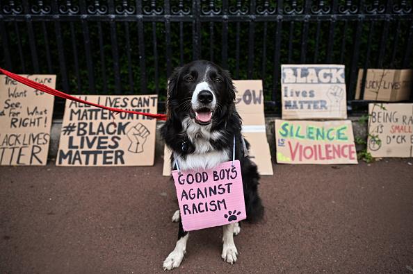 Banner - Sign「Black Lives Matter Movement Inspires Demonstrations In UK」:写真・画像(8)[壁紙.com]