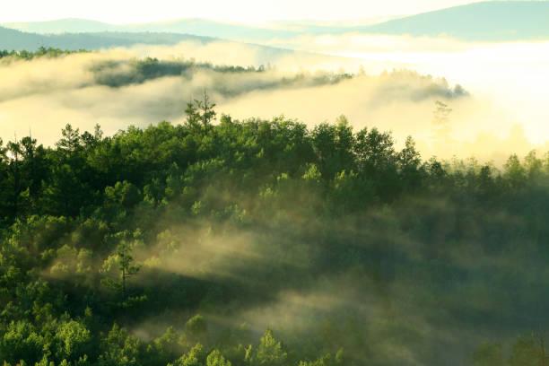 Greater Khingan Range scenery of Heilongjiang Province,China:スマホ壁紙(壁紙.com)