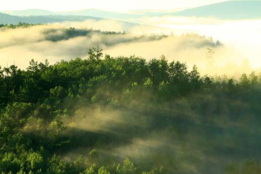 自然地理学「Greater Khingan Range scenery of Heilongjiang Province,China」:スマホ壁紙(6)